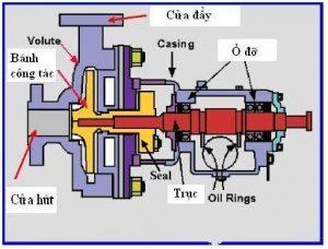 Máy bơm nước ly tâm trục ngang Pentax là gì?